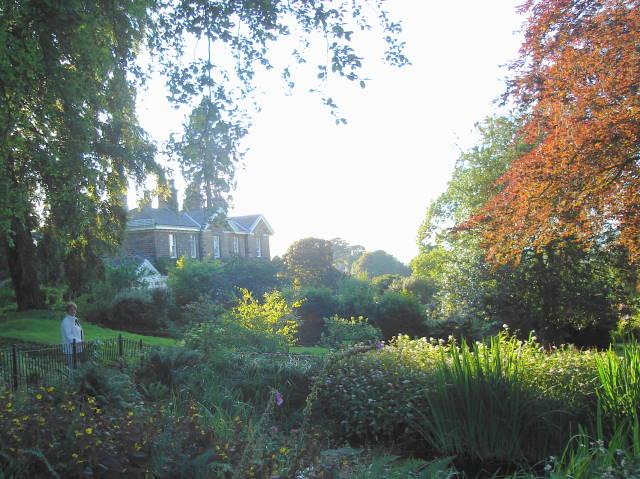 Margaret in the garden