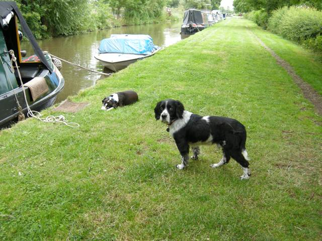 Mooring at Shardlow